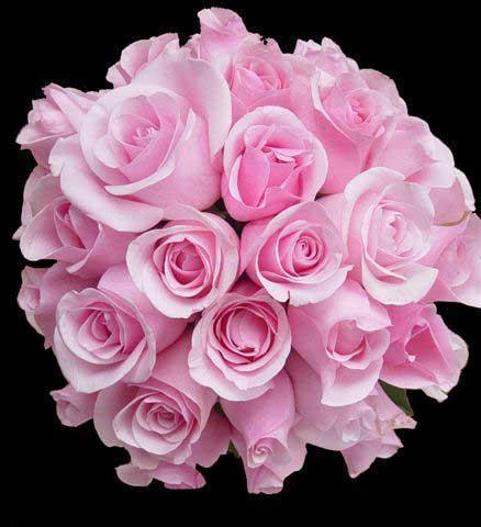 Доставка цветов по кировограду, красивые букеты из миллиона розы и лилии